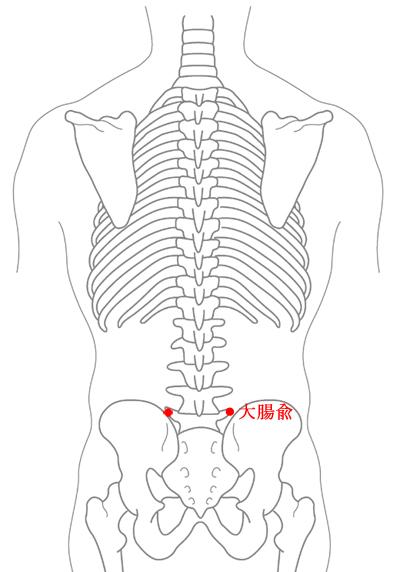 大腸兪の位置